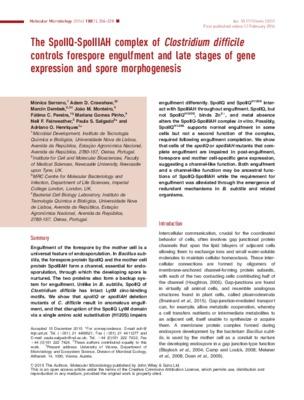 Clostridium difficile sporulation: roles of an essential protein complex