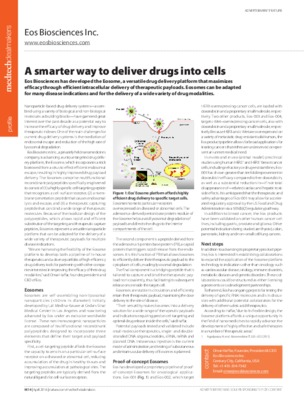 A smarter way to deliver drugs into cells
