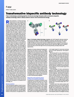 Transformative bispecific antibody technology